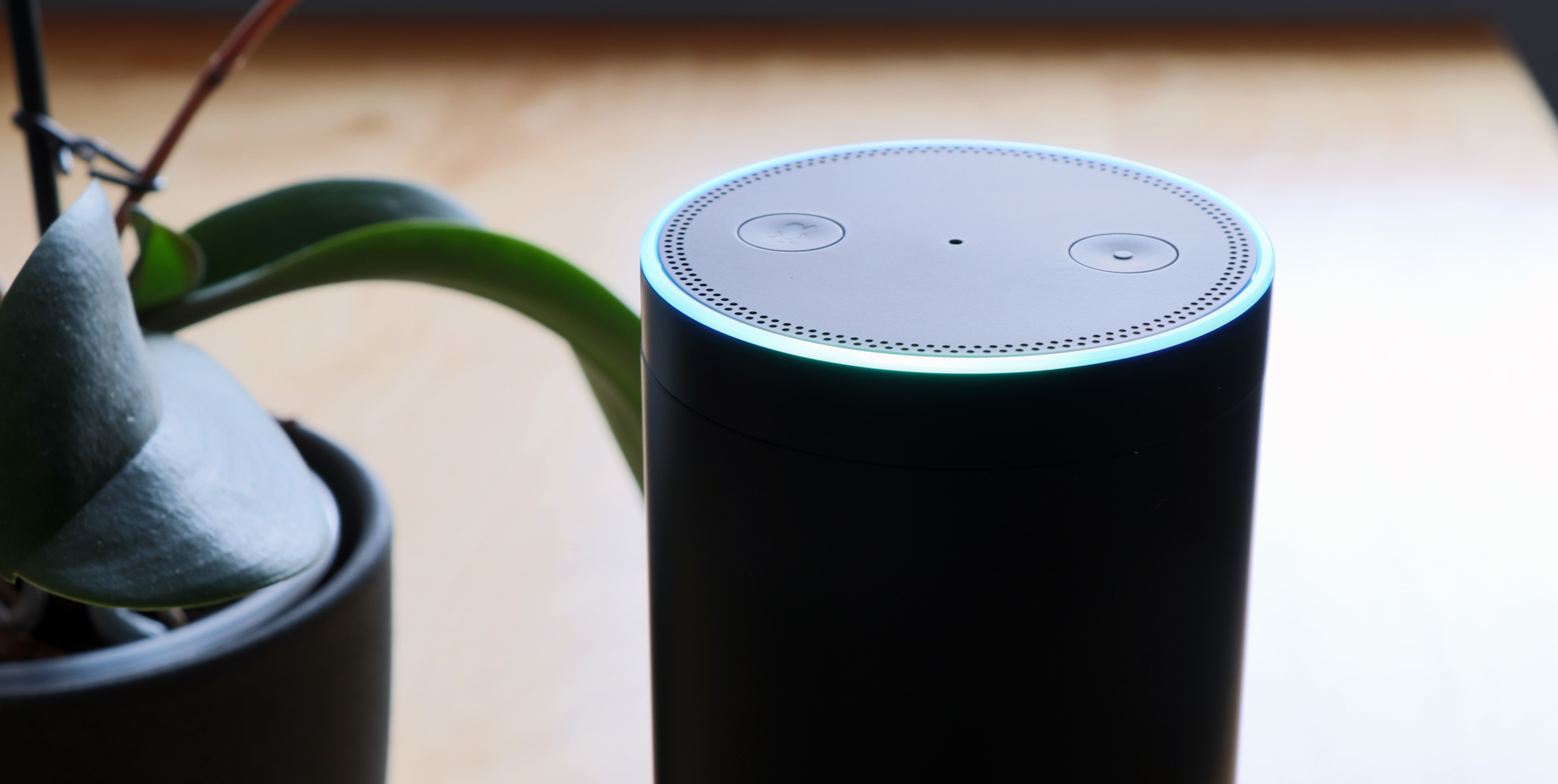 Top 5 Ways To Use Alexa For Your Real Estate Business